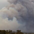 Barnawartha Fire  by Natalie Ord