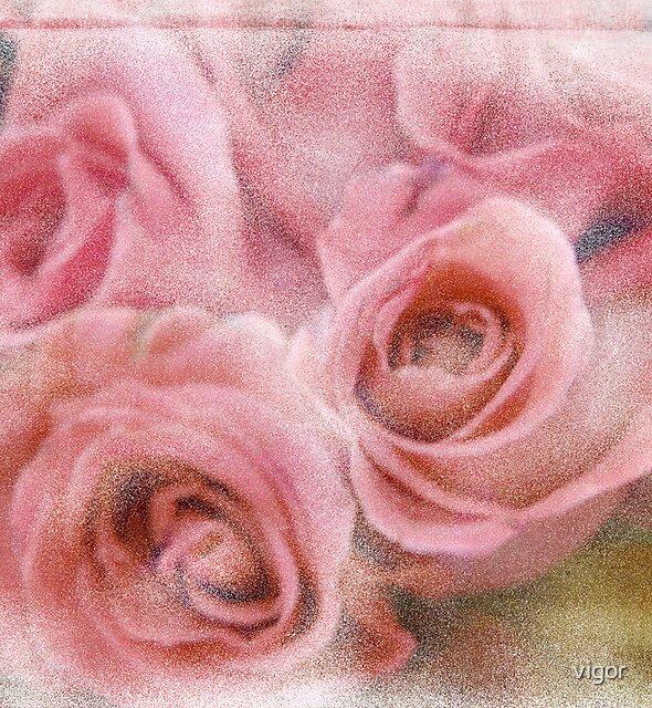 Rose Bouquet by vigor
