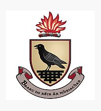 County Dublin Coat of Arms Photographic Print