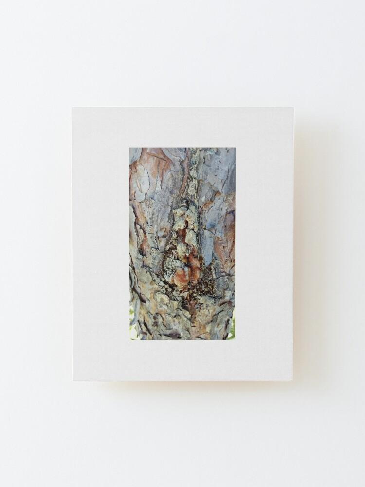 Alternate view of log up close 4 Mounted Print