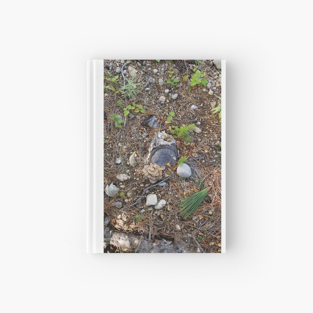 Boreal forest floor 1 Hardcover Journal