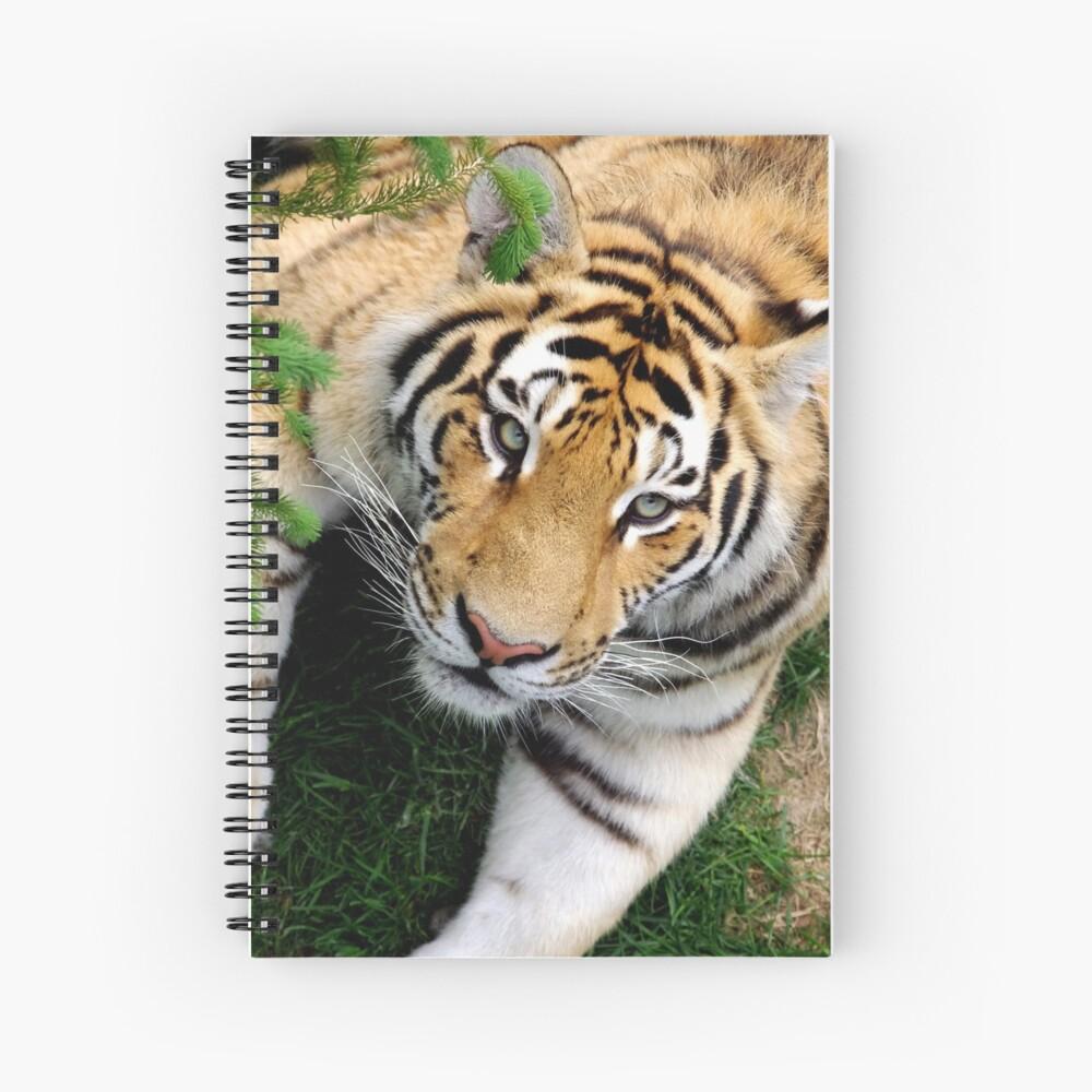 Chilling tiger Spiral Notebook