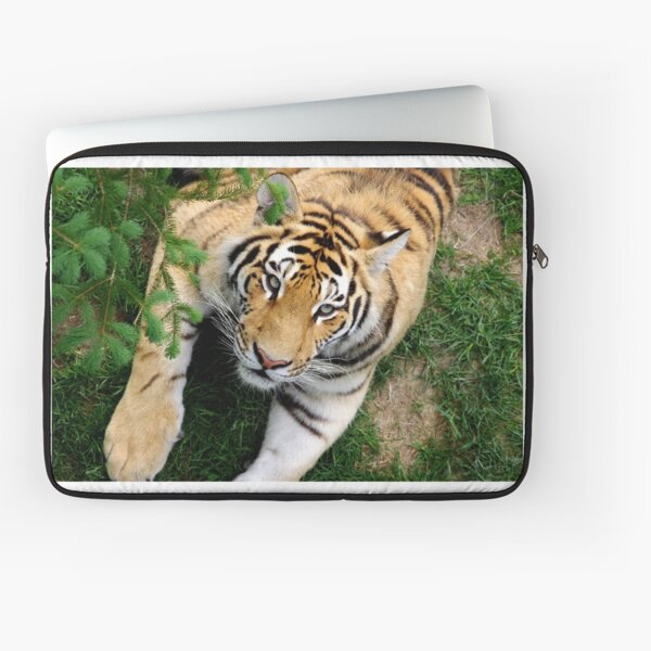 Chilling tiger Laptop Sleeve