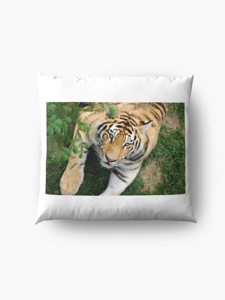 Alternate view of Chilling tiger Floor Pillow