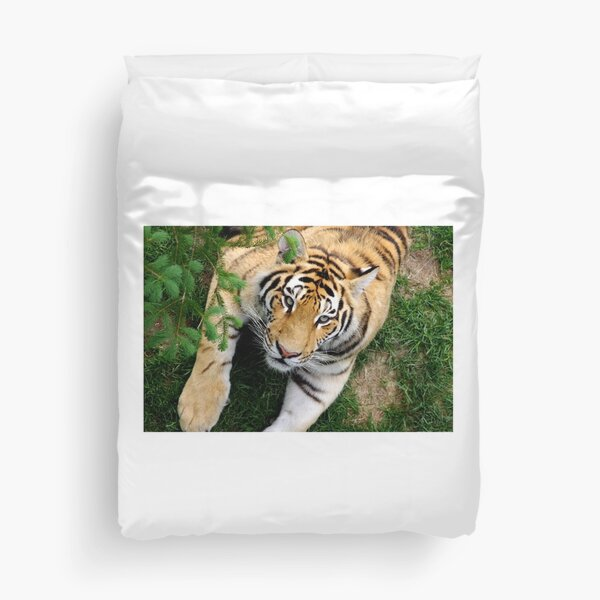 Chilling tiger Duvet Cover