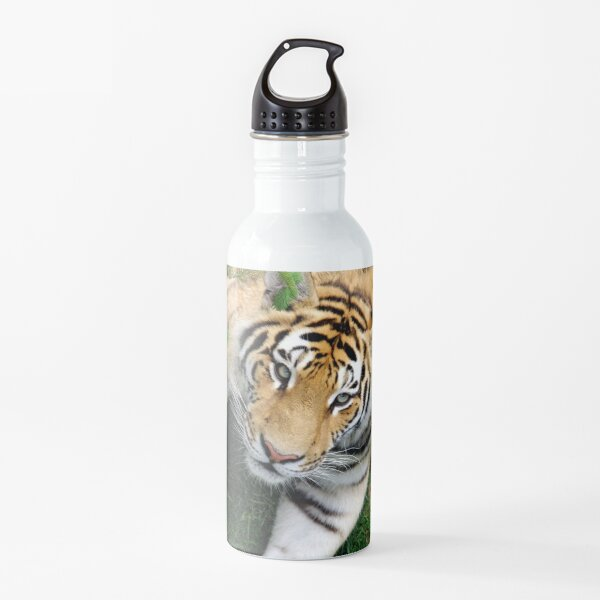 Chilling tiger Water Bottle