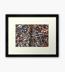Winters weight Framed Print