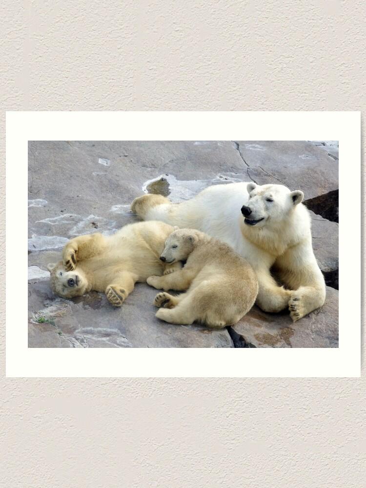 Alternate view of Happy nappy polar bear family Art Print