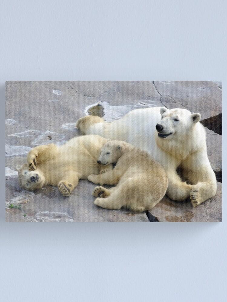 Alternate view of Happy nappy polar bear family Canvas Print