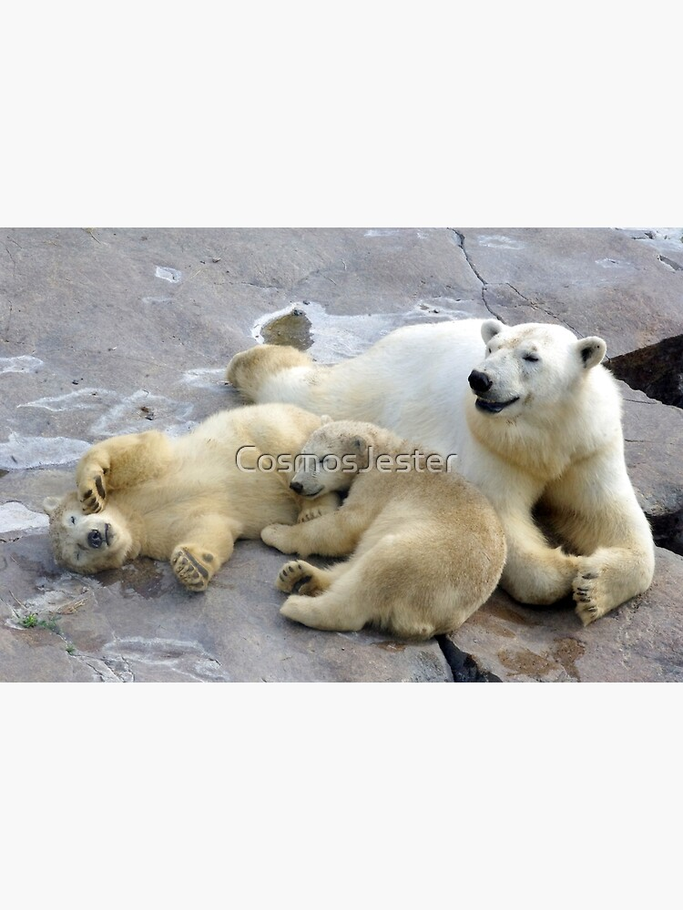 Happy nappy polar bear family by CosmosJester