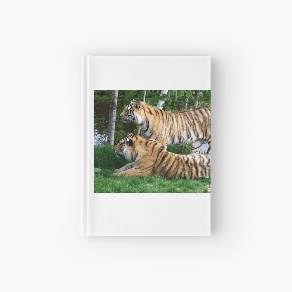 Double tiger Hardcover Journal