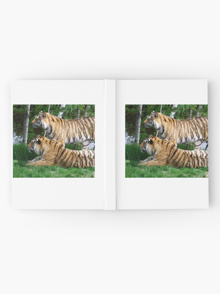 Alternate view of Double tiger Hardcover Journal