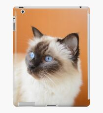 Eldest iPad Case/Skin