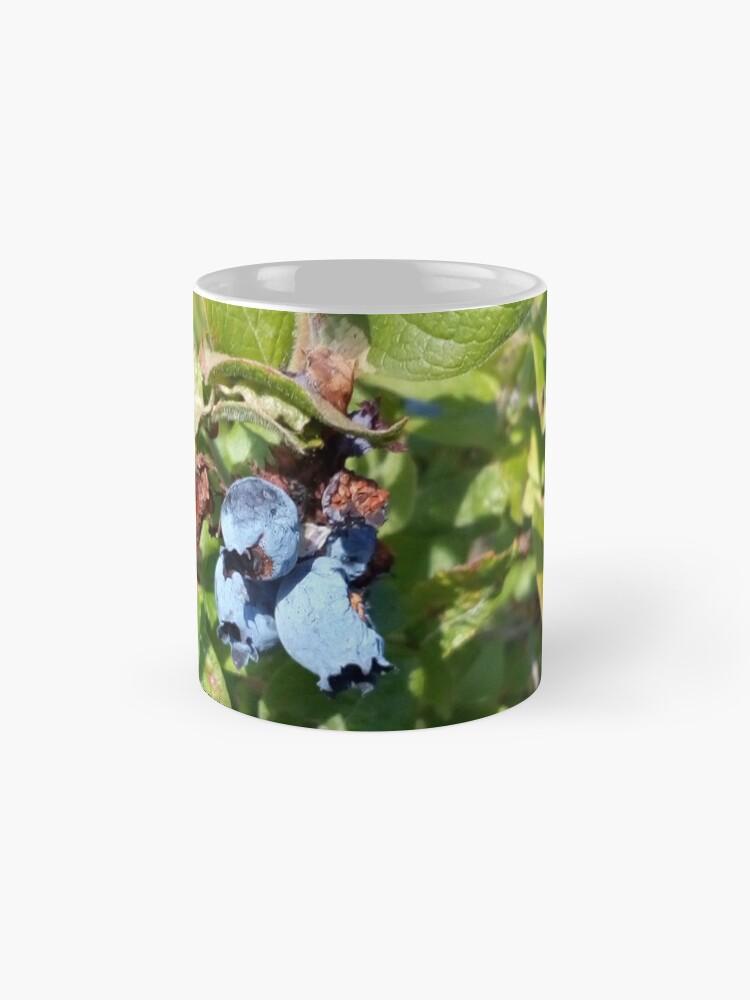 Alternate view of Blueberries past their prime Mug