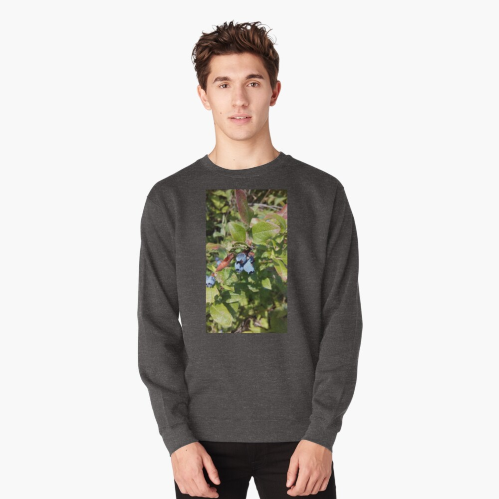 Blueberries past their prime Pullover Sweatshirt