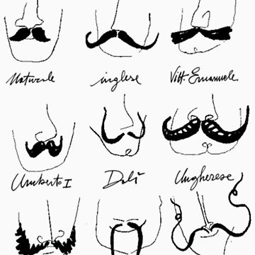 Types Of Mustache - Funny Mustache  by Selfcontrol