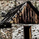 Cherry Creek Ranch by Richard Bozarth