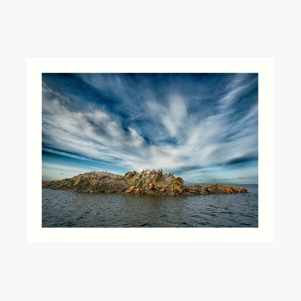 Animals on the Belle Chain Islets Art Print