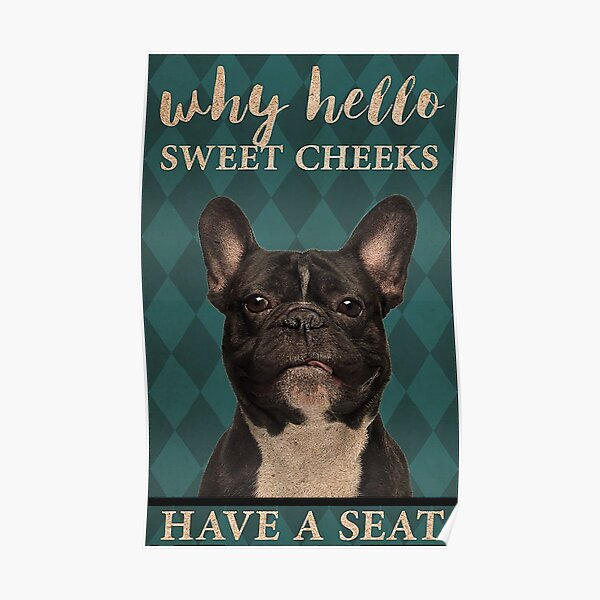 Dog Why Hello Sweet Cheeks Have A Seat Poster