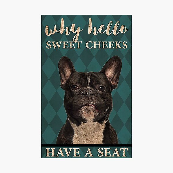 Dog Why Hello Sweet Cheeks Have A Seat Photographic Print