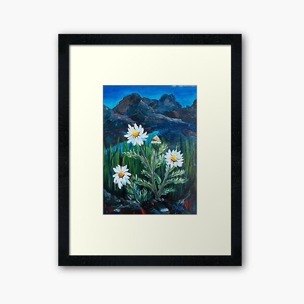 Blooms in the Night Framed Art Print