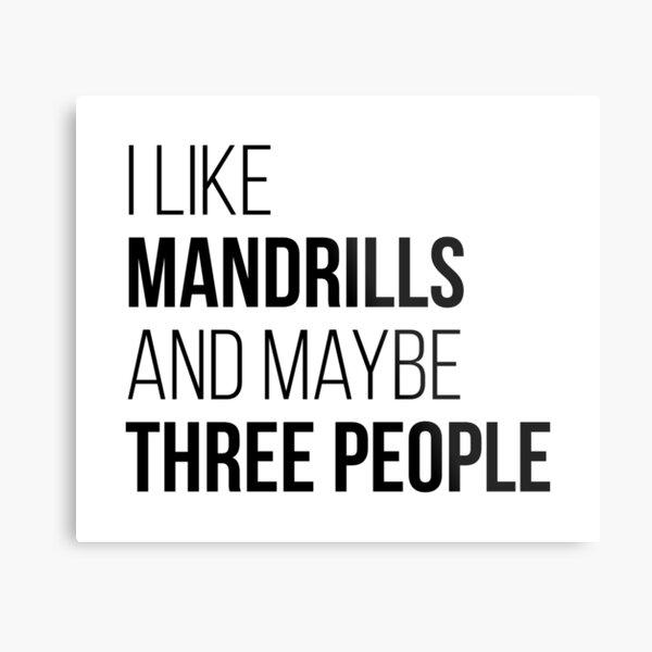 I Like Mandrills And Maybe Three People Metal Print