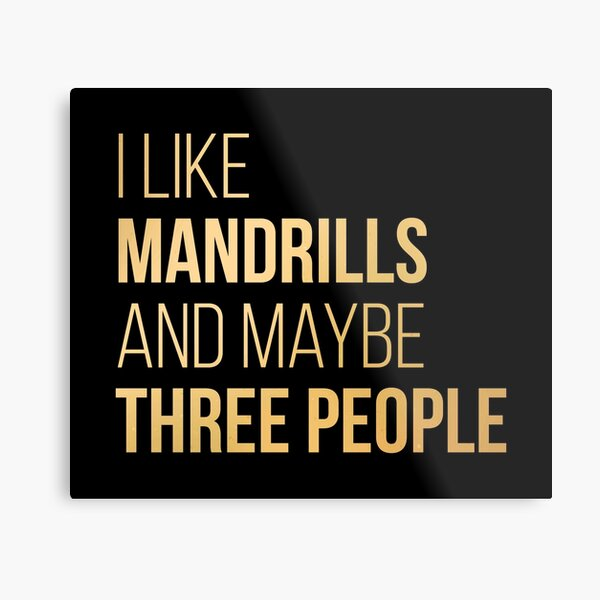 I Like Mandrills And Maybe Three People in Gold Metal Print