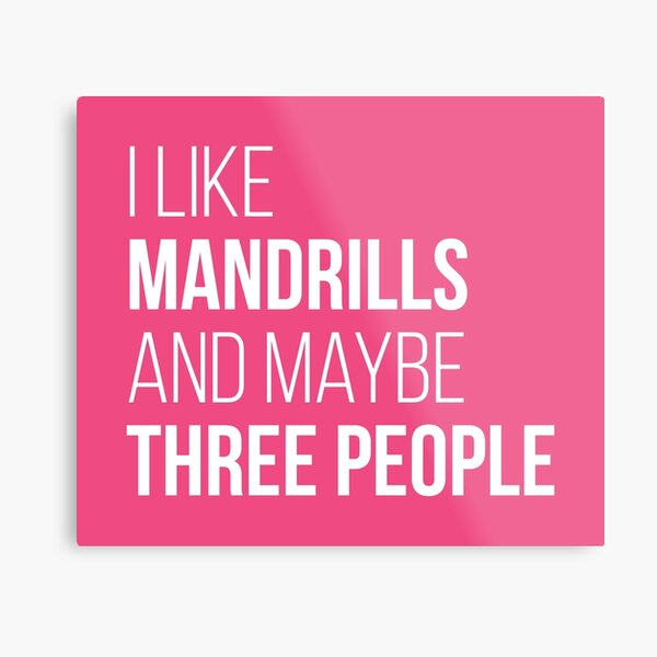 I Like Mandrills And Maybe Three People for Women Metal Print