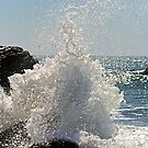 Caught Wave by Scott Johnson