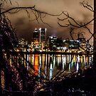 Portland Through the Trees by Richard Bozarth