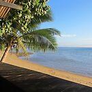 Coral Coast Fiji  by sparkes28