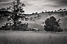 Resting place - Country Victoria  by Christine Wilson