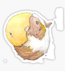 Guinea Pig & Orange Sticker