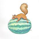 Squirrel & Watermelon by Tim Gorichanaz