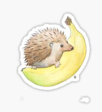 Hedgehog & Banana Sticker