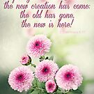 """""""...the new has come..."""" by Donna Keevers Driver"""
