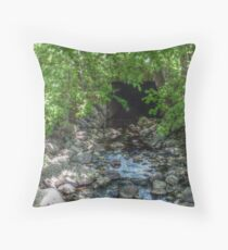 Unusual Brook Tunnel, Caldwell NJ Throw Pillow