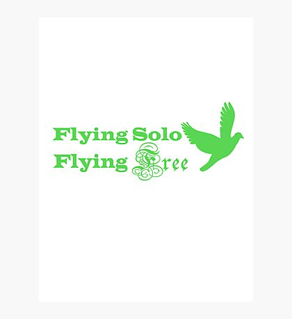 Flying Solo Flying Free Photographic Print