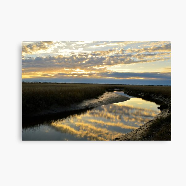Cloudy Creek Canvas Print