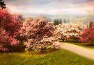 Cherrry Orchard by Jessica Jenney