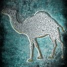 ©HS Camel Metals IA by OmarHernandez