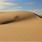 Mungo Dunes with Roo Prints by Jim Worrall