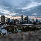 View from Kings Park by Adam Le Good