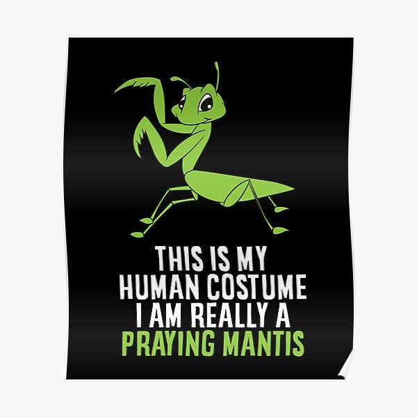 This Is My Human Costume I'm Really a Praying Mantis Poster