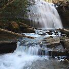 Little Stoney Creek Falls 2 by Don Rankin