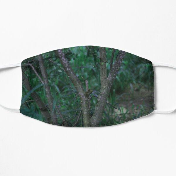Between the rainforest Mask