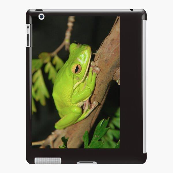 Green Tree Frog iPad Snap Case