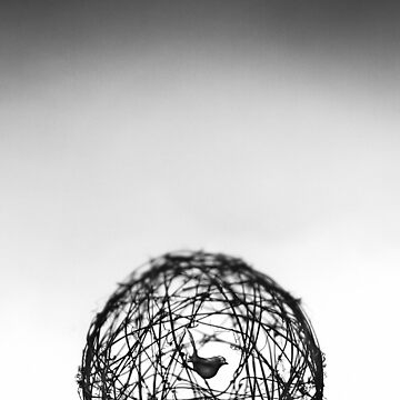 Caged Soul by pollychandler