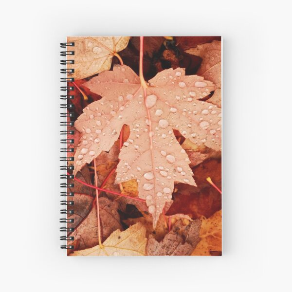 Enchanting  Autumn arriving soon  by Yannis Lobaina Spiral Notebook