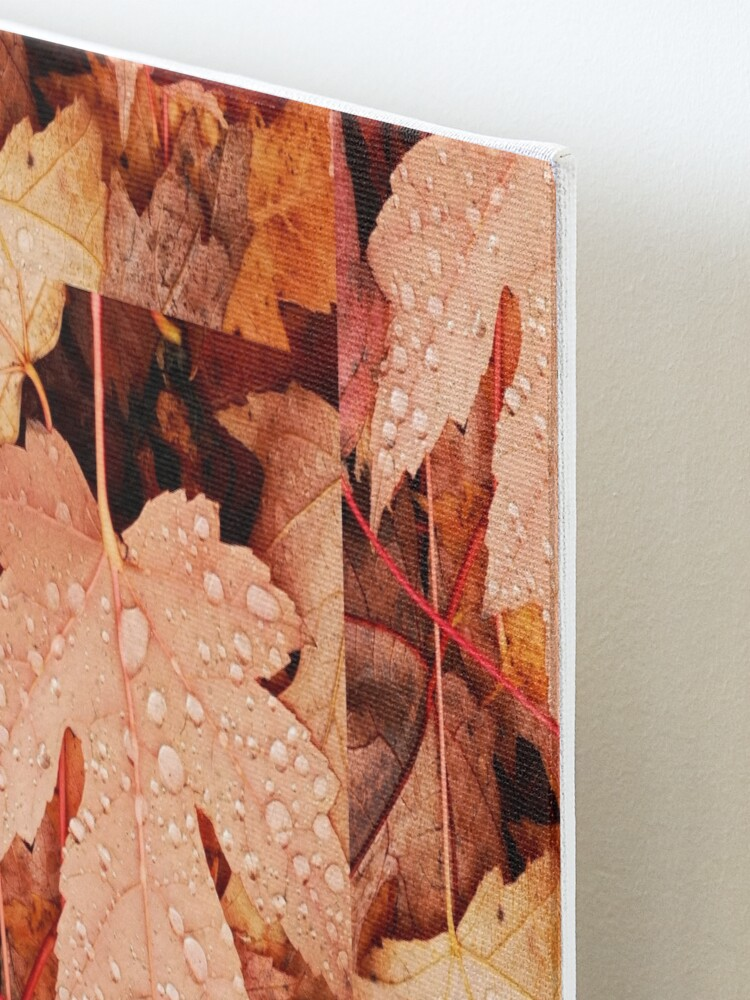 Alternate view of Enchanting  Autumn arriving soon  by Yannis Lobaina Mounted Print